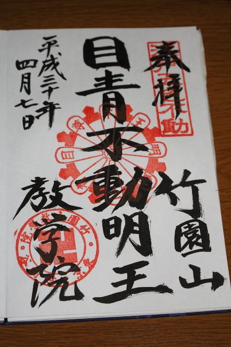 IMG_0062-1.JPG
