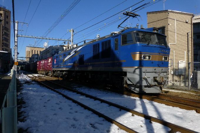 P1010065(1).JPG